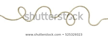 liny · równoważenie · akt · monet · górę · finansów - zdjęcia stock © gemenacom