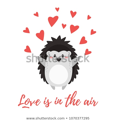 hedgehogs in love Stock photo © adrenalina