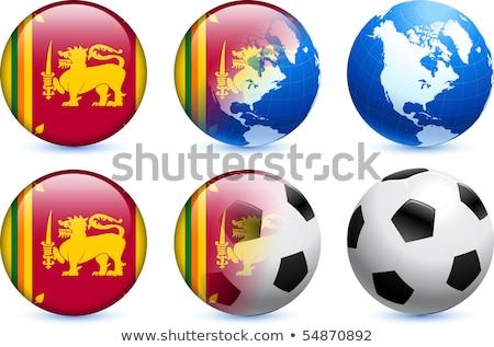 Canadá Sri Lanka bandeiras quebra-cabeça isolado branco Foto stock © Istanbul2009