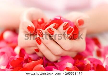 Rood · rose · vrouwelijke · hand · geschilderd · gekleurd · nagels - stockfoto © geniuskp