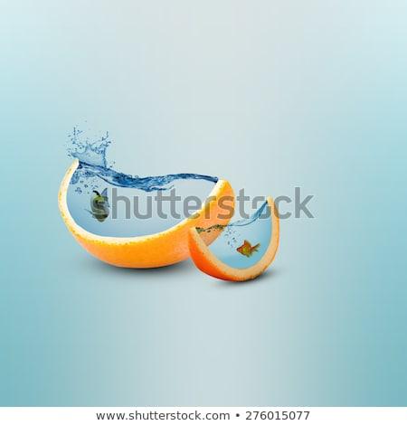 Kreatywność twórczej soku pomarańczowy ludzi Zdjęcia stock © Lightsource