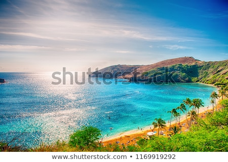 Havaí água paisagem oceano Foto stock © iofoto