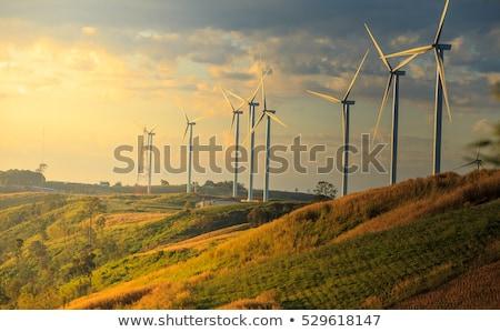 rüzgâr · türbin · elektrik · jeneratör · ayakta · mavi · gökyüzü - stok fotoğraf © nito