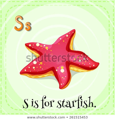 A letter S for starfish Stock photo © bluering