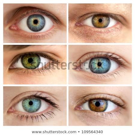 Ingesteld vrouwelijke mannelijke oog vrouw man Stockfoto © Panaceadoll