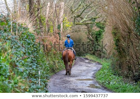 Girl on country lane Stock photo © IS2