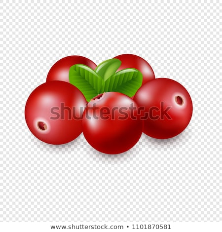 granberry isolated white background stock photo © adamson