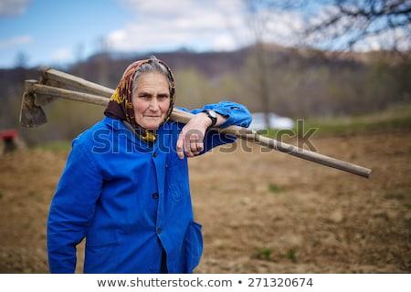 Landbouwer werknemer oude vrouw ingesteld vrouw Stockfoto © toyotoyo