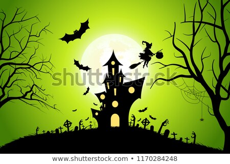 Halloween Party Background with Moon, Whitch and Haunted House Stock photo © WaD