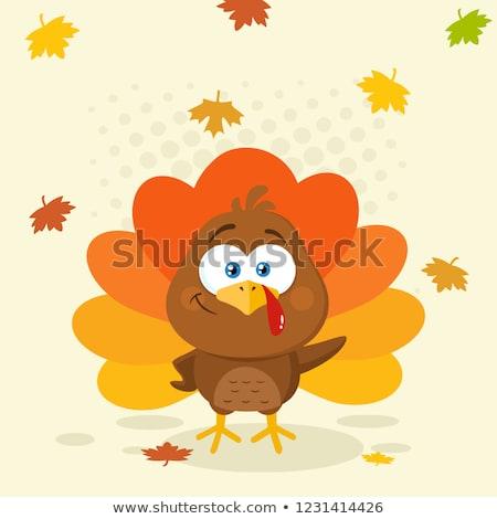 Bonitinho Turquia pássaro projeto Foto stock © hittoon