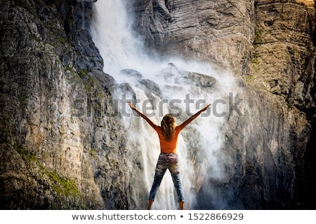 Waterfall in Pyrenees Stock photo © pedrosala