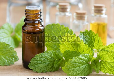 a bottle of melissa essential oil with fresh melissa stock photo © madeleine_steinbach