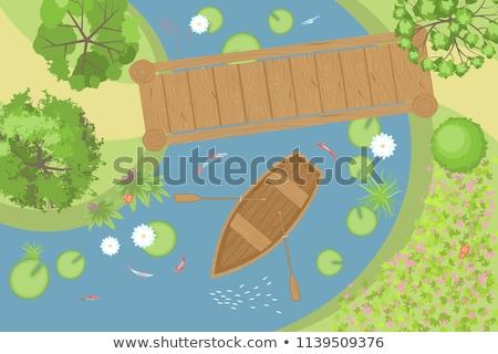 Lagoa parque ver ilustração grama peixe Foto stock © colematt