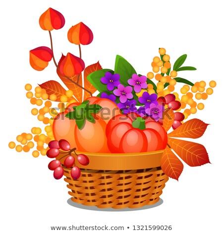 otono · cosecha · hortalizas · frutas · calabaza · tomates - foto stock © lady-luck