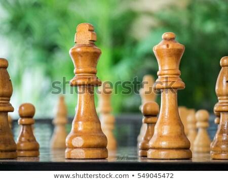 Rey del ajedrez blanco hombre madera guerra Foto stock © bdspn