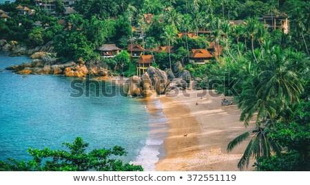 pittoreske · tropisch · eiland · strand · hemel · wolken - stockfoto © amok