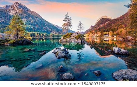 озеро Альпы Германия черно белые изображение южный Сток-фото © rudi1976