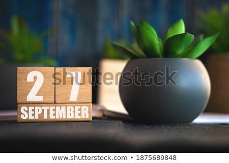 Cubes 27th September Stock photo © Oakozhan