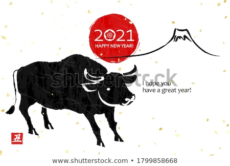 Cattle Stock photo © alexeys