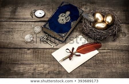 golden egg and book stock photo © devon