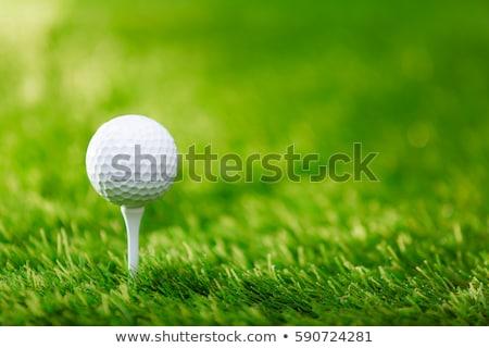 гольфист дисков мяч для гольфа гольф спорт клуба Сток-фото © stuartmiles