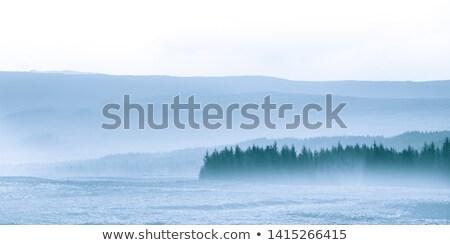 fog in scotland stock photo © hofmeester