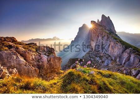kış · manzara · pastoral · panorama · kar · dağ - stok fotoğraf © smuki