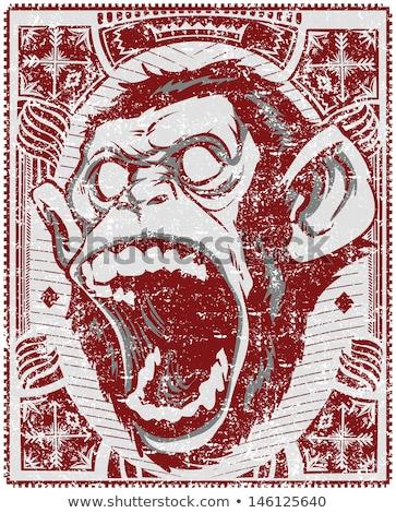 furieux · singe · tête · illustration · forte · canine - photo stock © fmuqodas
