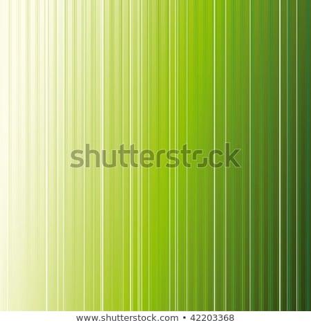 Conceptual Dark Green Stripes Vector Background Photo stock © MeiKIS