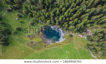 trentino   covel lake stock photo © antonio-s