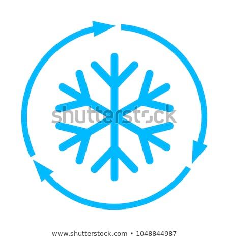 Thermomètre bleu vecteur icône bouton internet Photo stock © rizwanali3d
