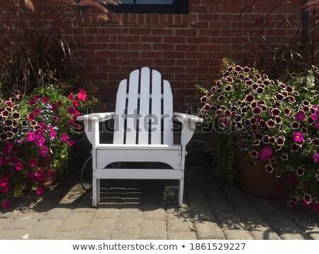 white frame among brick walls Stock photo © Paha_L