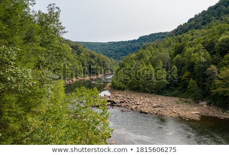 View of Jenkinsburg Bridge over Cheat River stock photo © backyardproductions