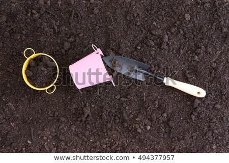 Small pink and yellow pails in rich black soil Stock photo © ozgur