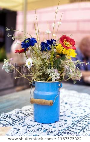 piros · virágok · fogzománc · bogrács · rusztikus · konzerv · váza - stock fotó © manera