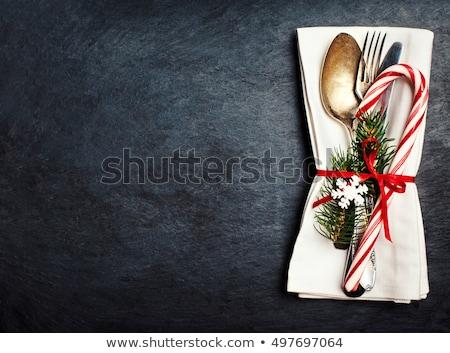 bağbozumu · Noel · süslemeleri · tablo · beyaz - stok fotoğraf © dariazu