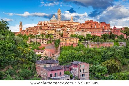 Toscana Itália vinho cidade verão azul Foto stock © lightpoet