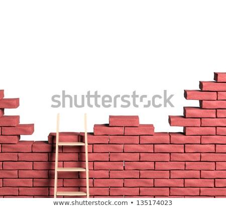 Business Optimization on Brick Wall. Stock photo © tashatuvango