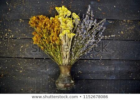 dry herbs flower in vase   tutsan sagebrush stock photo © illia