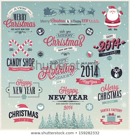 Elegancki christmas godło szablon kolekcja wektora Zdjęcia stock © sgursozlu