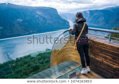 表示 · ポイント · 観察 · デッキ · ノルウェー · 美しい - ストックフォト © cookelma