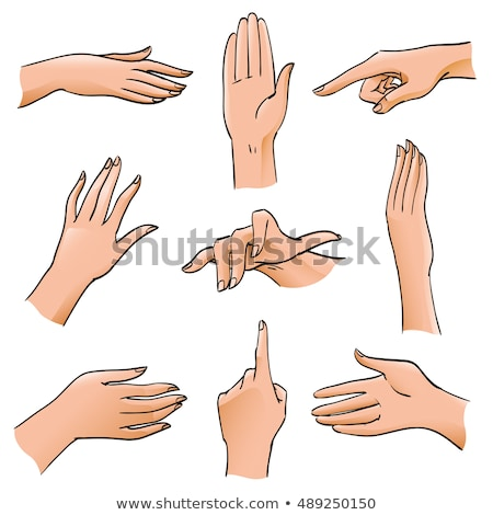 color female hand pointer finger showing gesture vector stock photo © pikepicture