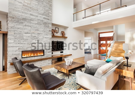 Front view of the interior of modern living room with a fireplace at home Stock photo © wavebreak_media