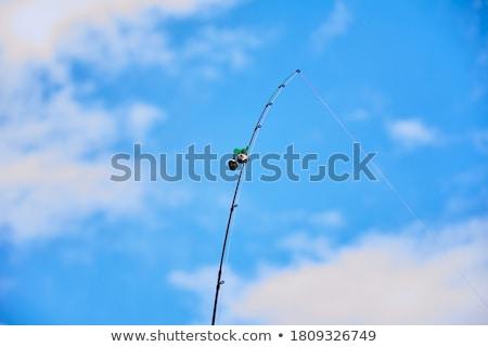 Olta çan gökyüzü su balık tutma balık Stok fotoğraf © Borissos