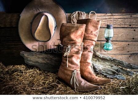 натюрморт обуви лампы синий красный Сток-фото © curaphotography