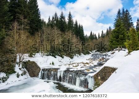 winter landscape, Czech Republic Stock photo © phbcz