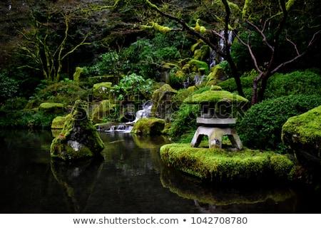 Zen giardino muschio japanese kyoto texture Foto d'archivio © smithore