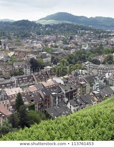 Freiburg im Breisgau in sunny ambiance Stock photo © prill