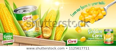 Gouden mais veld goud kleur natuur Stockfoto © jonnysek