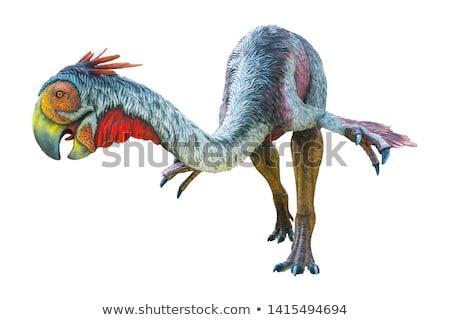 dinosaur gigantoraptor Stock photo © mariephoto